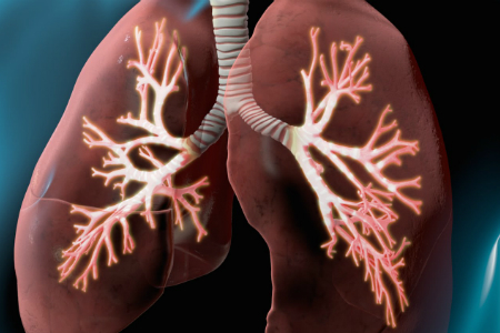 Study highlights failures to test patients prior to macrolide treatment despite lung disease risk